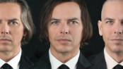Integrace a transplantace vlasů